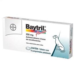 Baytril Flavour Bayer 250mg (Emb. contém 6 Comprimidos)