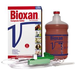 Bioxan Vallee Composto Vitamínico Injetável (Emb. contém 1un. de 500ml)