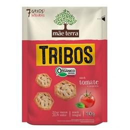 Biscoito integral mãe terra 50g organico tomate